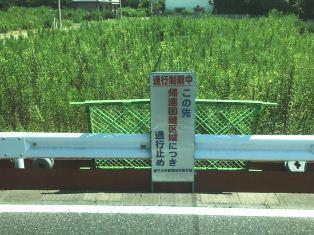 20180802_shizuoka-fukushima_toubu2sato5.jpg